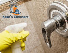 Domestic Cleaning N1